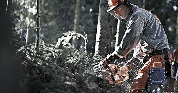 motorsågar och röjsågar till skogen